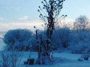 art_winter