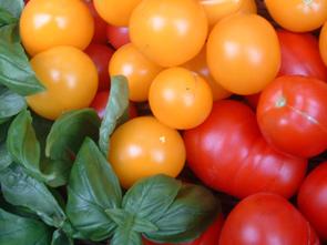 art_tomaten